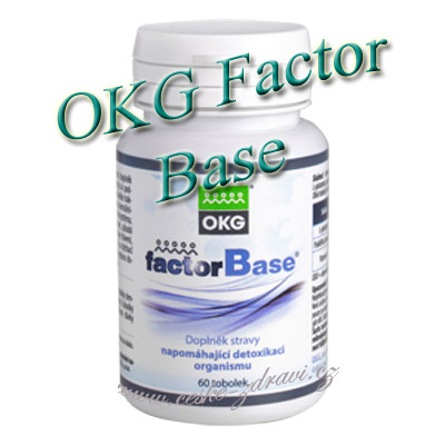 OKG Factor Base